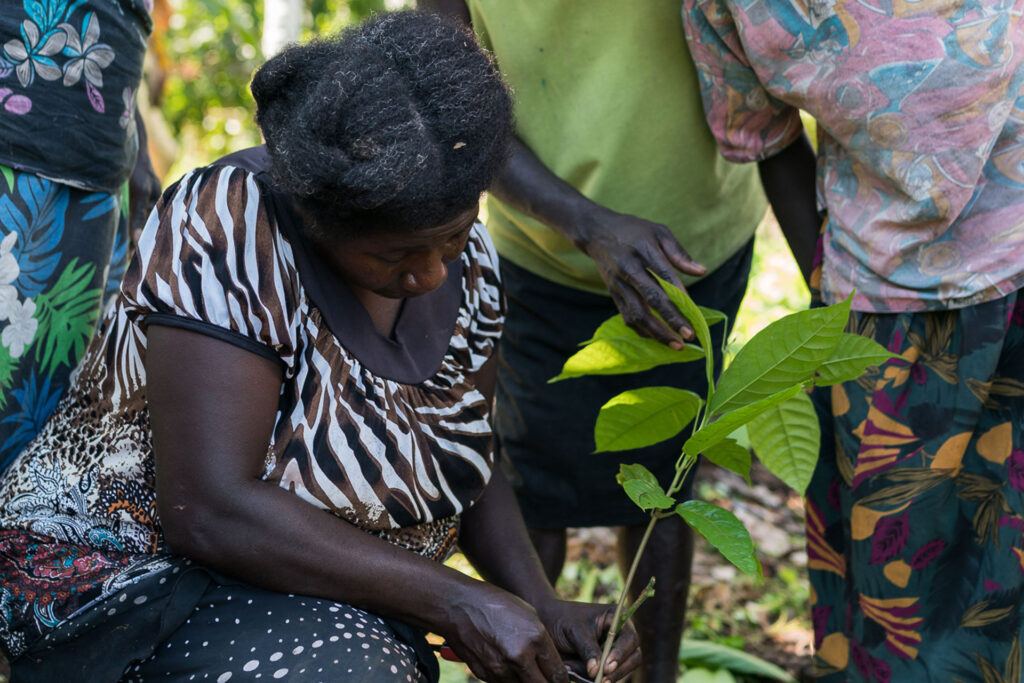 Women in Agriculture - Papua New Guinnea
